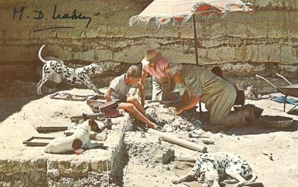 Mary Leakey autograph postcard